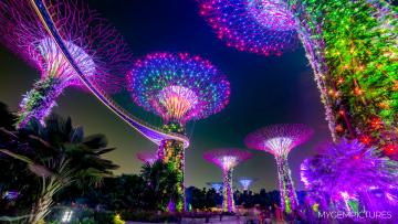 Vorschaubild One Night in Singapore 4K B-2